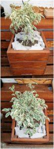 Wood Pallet Planter Box