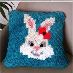 Crochet Pillow Pattern (16)